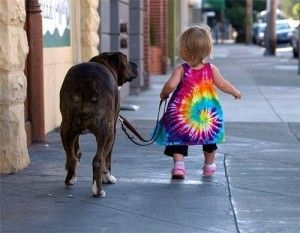 paseando-al-perro