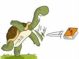 tortuga enfadada
