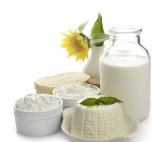 lacteos, los yogures