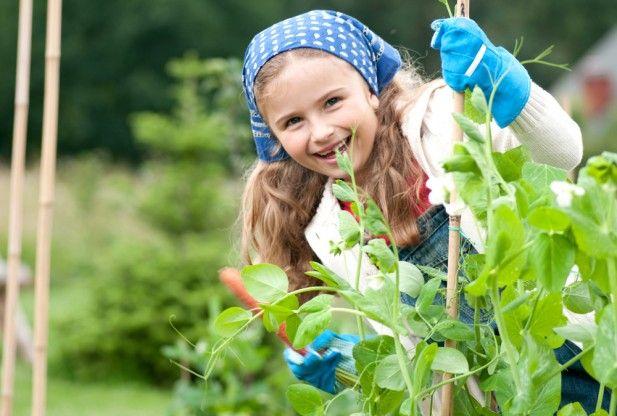 children verduras