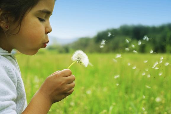 Trastorno por déficit de Naturaleza en niños