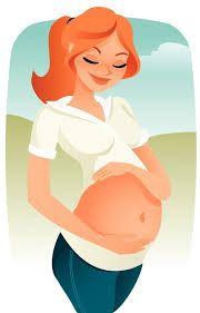 la placenta, órgano compartido