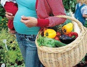 embarazada y vegetariana