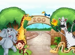 primer día en el zoo