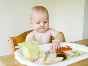 BLW - Baby Led Weaning