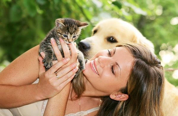 mascotas en casa amor