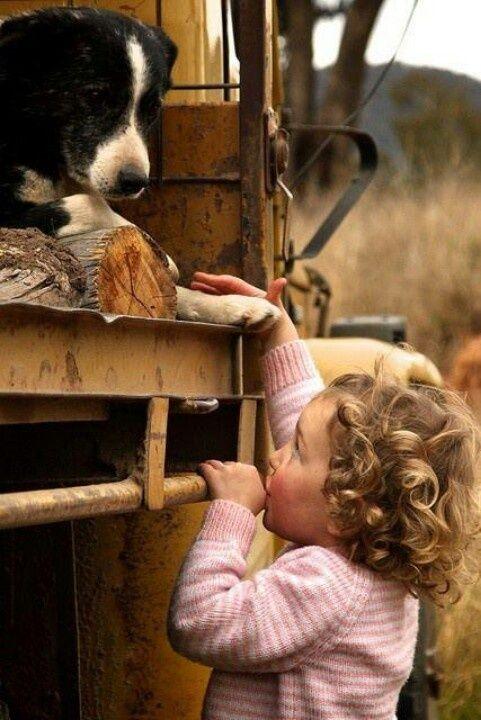 higiene niños y mascotas